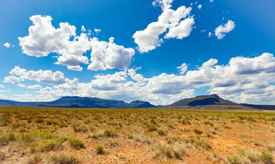 Die beste Reisezeit für Südafrika