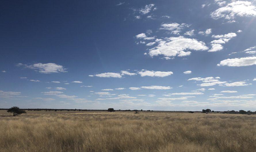 Central Kalahari Game Reserve – Bape Camp